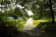 Camping Holmsley